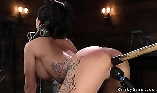 On all four in bondage device toyed